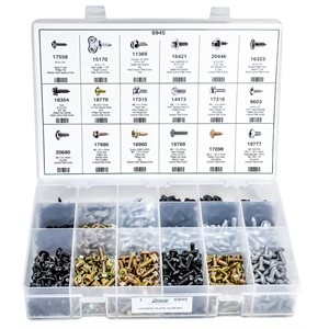 LICENSE PLATE SCREWS ASSORTMENT